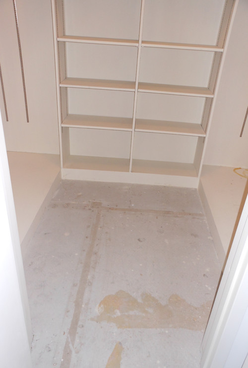 Original Master Closet - Before Photo