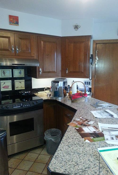 Before Kitchen Penninsula Division